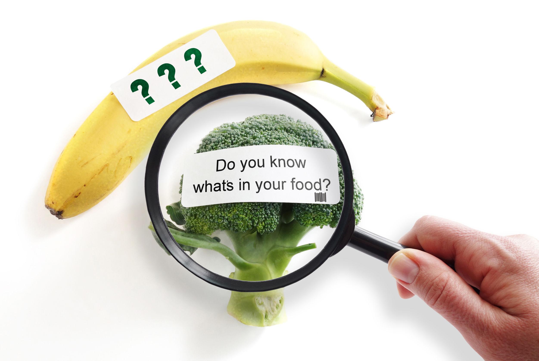 GMO potraviny
