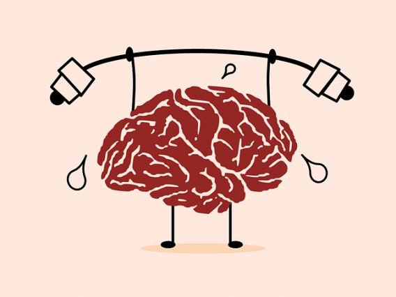 užívaním chlorelly podporíš svoj mozog