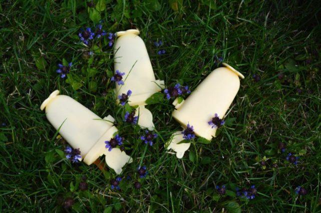 béžové formy na nanuky položené medzi kvetmi