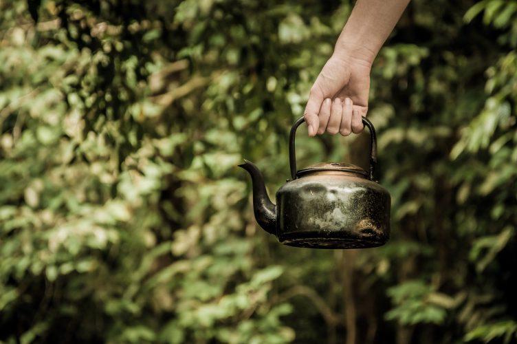 Výroba matcha čaju je veľmi zložitá.