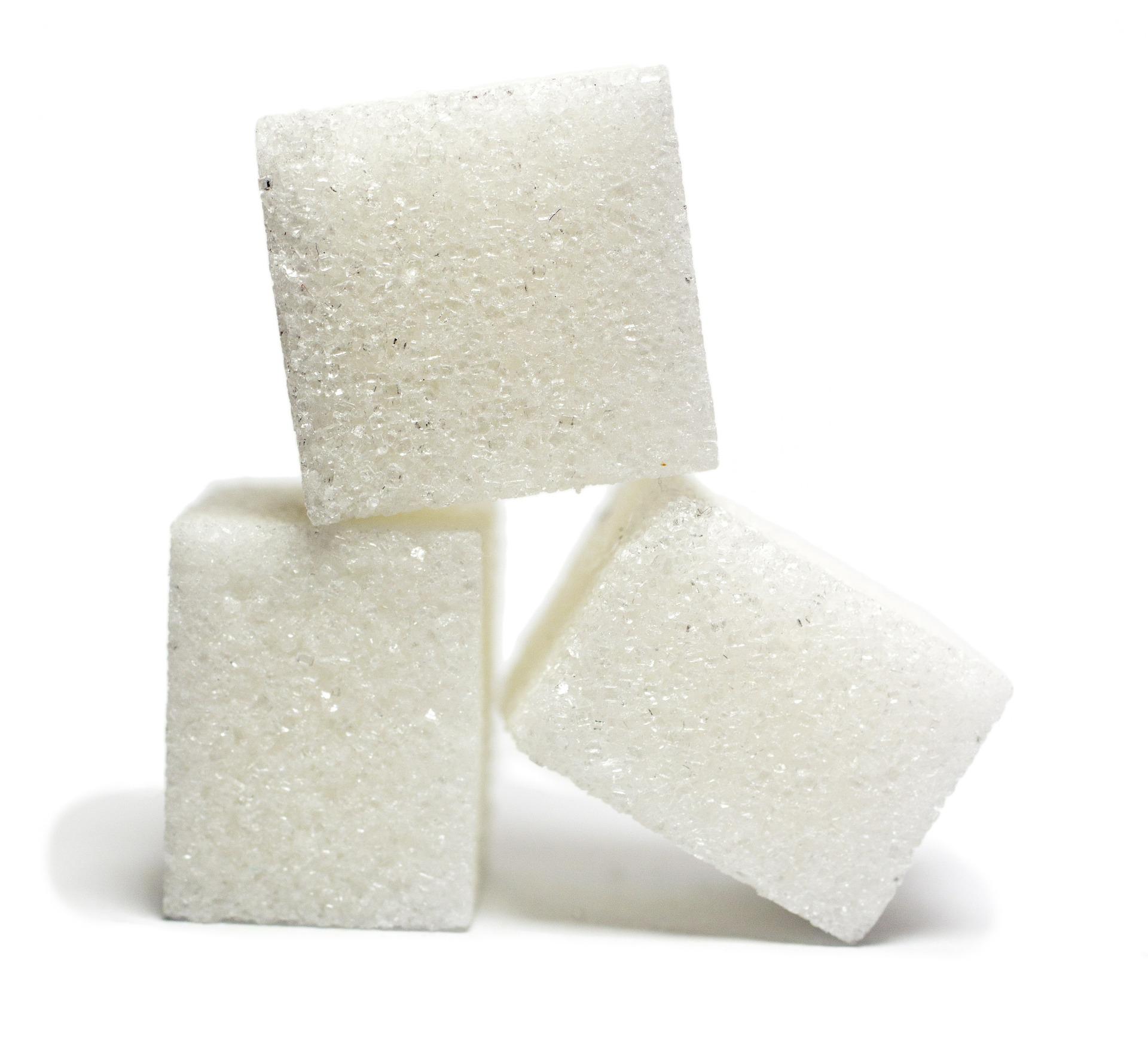 Pankreas je hlavou metabolizmu cukrov